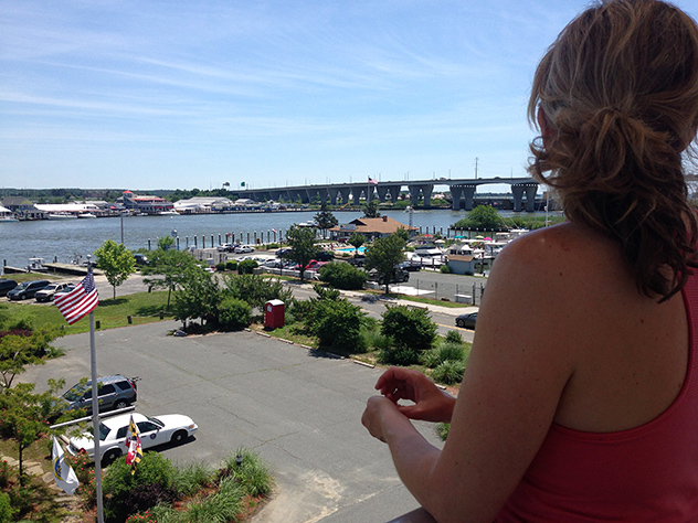 Noontime Father's Day Sunday along Kent Narrows, the Admiral gazes from the welcome center's overlook, 15JUN14